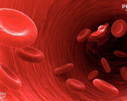 penyakit hemofilia