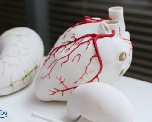 Manfaat Ekokardiografi Bagi Penderita Penyakit Jantung