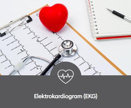 Pemeriksaan Jantung EKG Elektrokardiogram 445x370