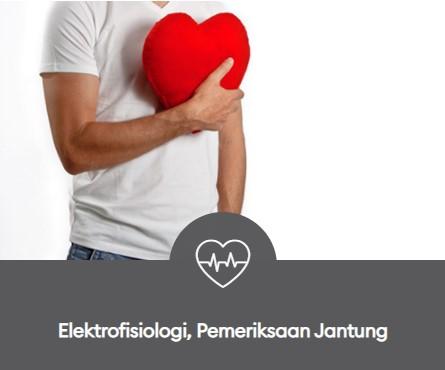 elektrofisiologi pemeriksaan jantung 445x370