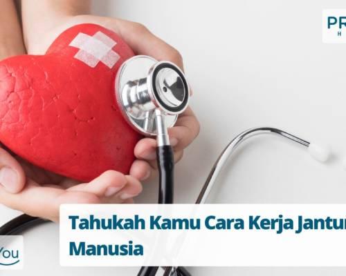 Tahukah Kamu Cara Kerja Jantung Manusia